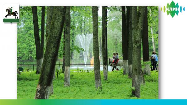 Парк Майданово, Клин